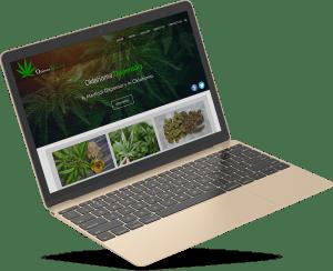 A website portfolio for a dispensary website design